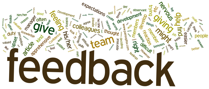 word-cloud-giving-feedback